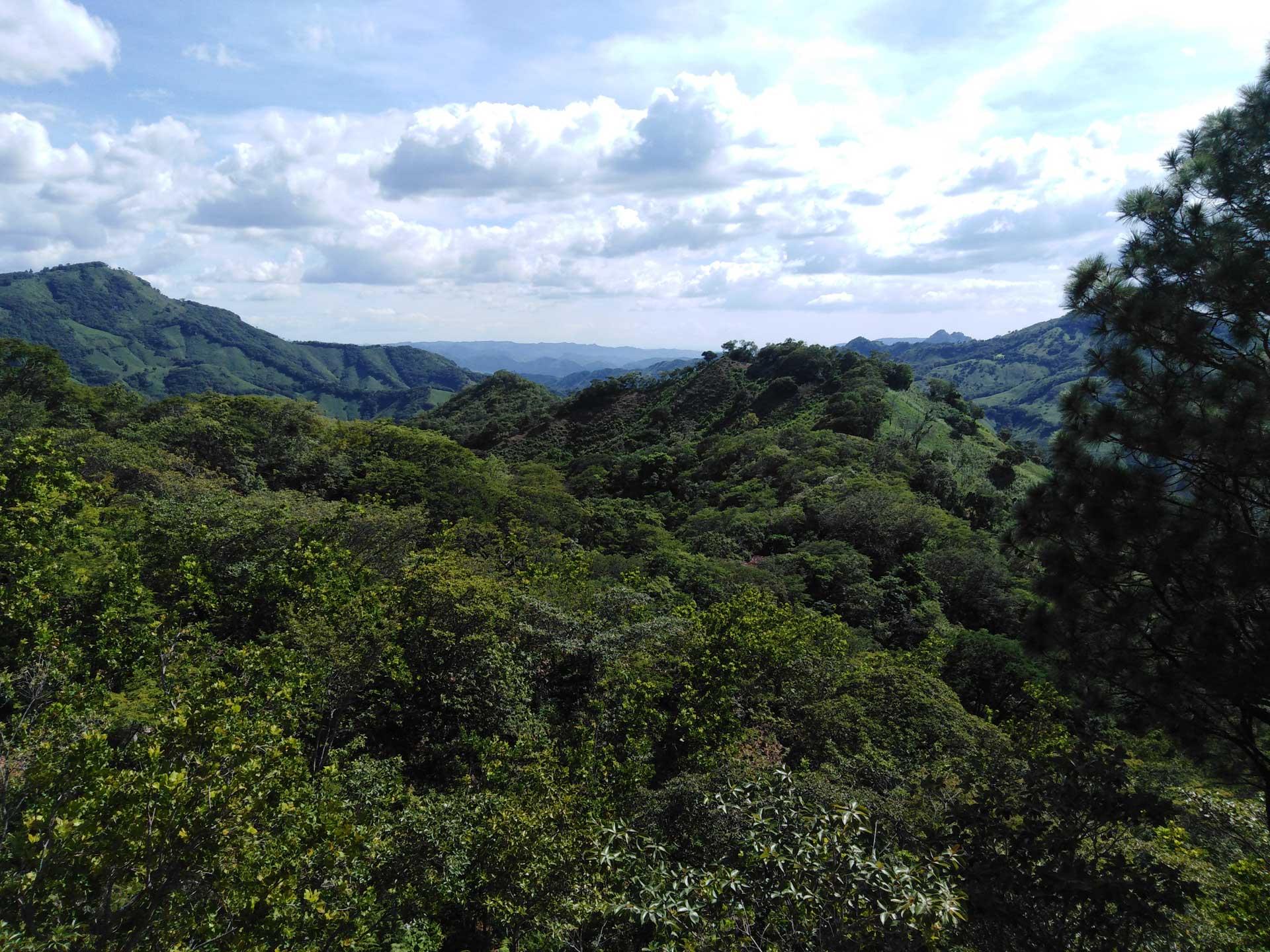 paisaje san nicolas nicaragua revista naturalista