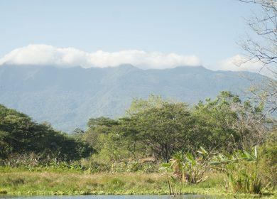 Las isletas de Granada durante el Censo Centroamericano de Aves en imagenes
