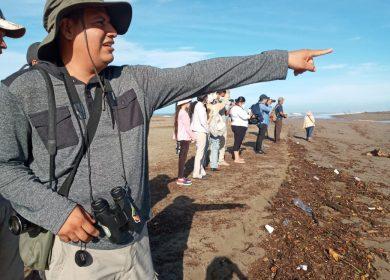 Millones de aves vienen hacia el sur de América y la gente sale a verlas