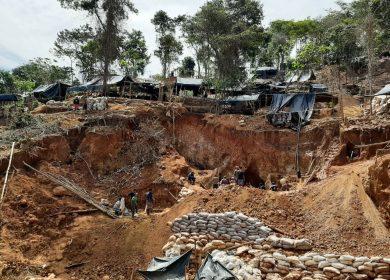 Las empresas detrás de la extracción de oro y destrucción de reserva de Biósfera